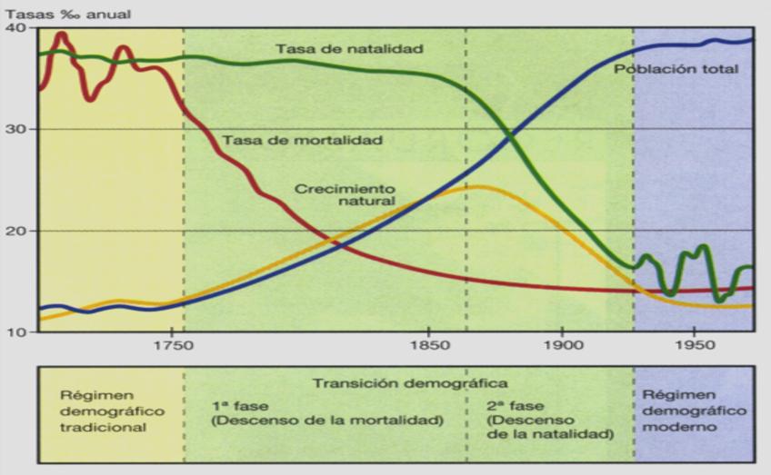 BLOG DE HISTORIA DEL MUNDO CONTEMPORÁNEO: LA TRANSICIÓN DEMOGRÁFICA: DEL  CICLO DEMOGRÁFICO ANTIGUO AL MODERNO