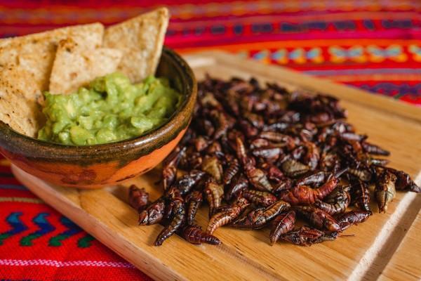 Winko, las botanas de chapulines para alimentar a México
